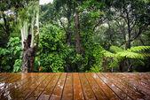 Fa táblák és erdő