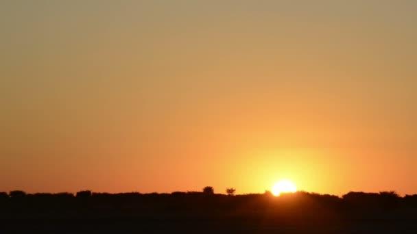 Africké slunce záběrů
