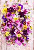Čerstvé květy vícebarevné