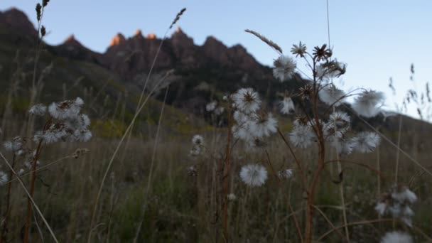 Červené hory poblíž Maroon zvony Colorado krajina