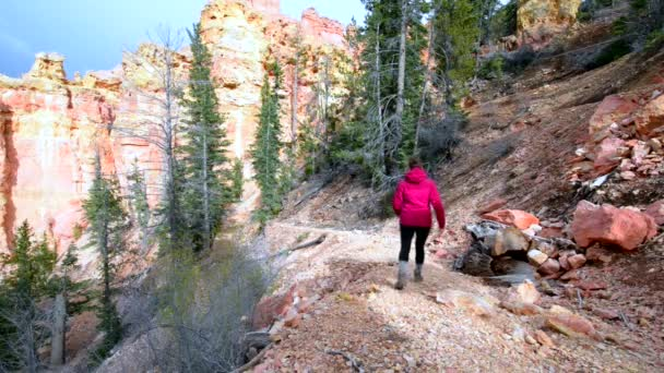 Nő hátizsákos túrázás le a Ponderosa Canyon Bryce Nemzeti Park
