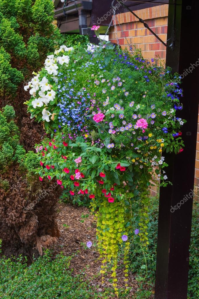 Hanging basket full of colorful summer plants.