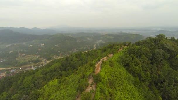 Letecký pohled na tropický deštný prales