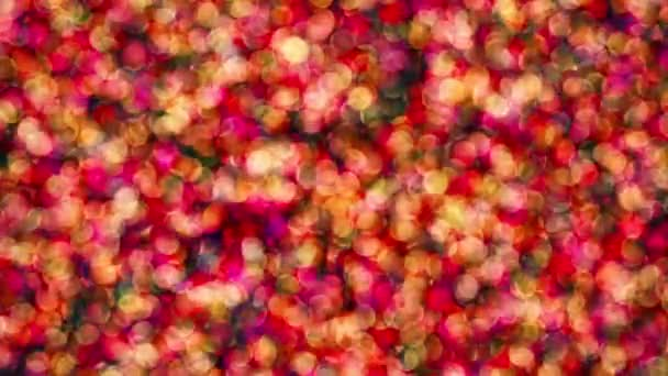 Blikající částic v různých barvách