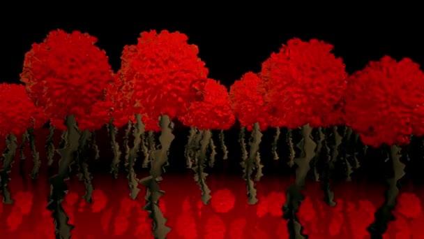 Abstraktní květy v červené a zelené na černou