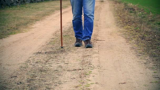 Man with walking stick on the road