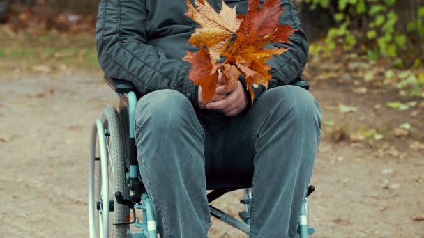 Disabled man with autumn leaves in wheelchair at outdoor in the park