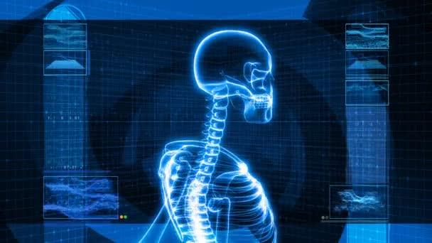 X-Ray of Human Head (HD)