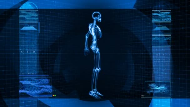 X-Ray Scan of Human Skeleton (HD)