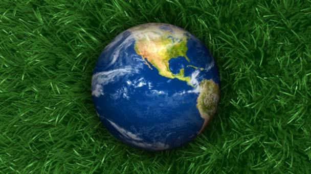 Föld a Grass háttér 3D animáció