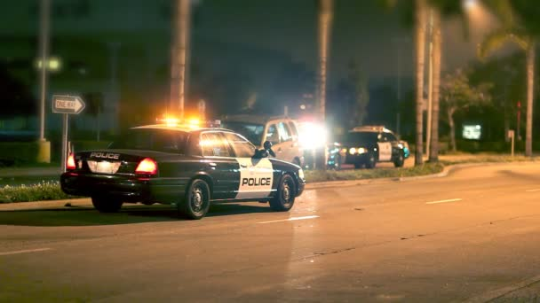 Police at Scene of Car Accident at Night
