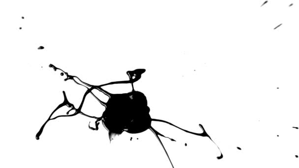 Ink Drop Splatter (Black on White)