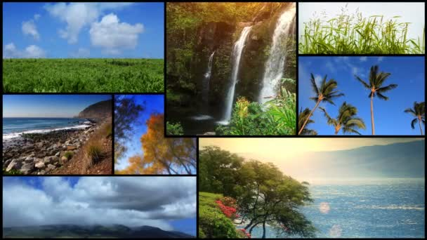 Přírodní Scenika video MONTAGE