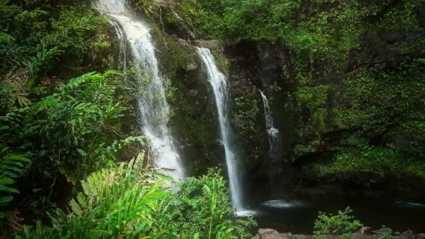Vodopád v tropickém ráji (Hd smyčka)