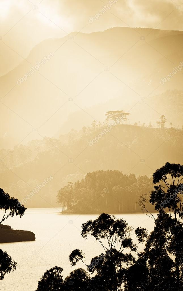 Panorama of the tea plantations and lake at sunset, Maskeliya, S