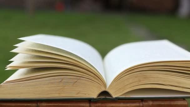 Otevřená kniha se stránkami foukané větrem