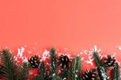 fenyő kúpok fenyő ágakkal és mesterséges havazással, újévi koncepció