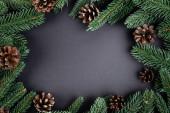 Plocha ležela s borovicovými kužely s jedlovými větvemi na černém pozadí, novoroční koncept