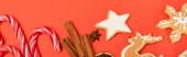 top view cukornád, fűszerek és mézeskalács cookie-k piros alapon, banner