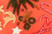 felső kilátás karácsonyfa, cukornád, fűszerek és mézeskalács cookie-k piros háttér