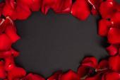 Ansicht der Rosenblätter von oben isoliert auf schwarz