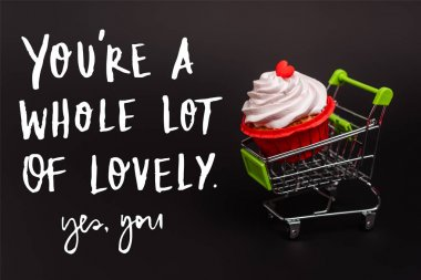 Small shopping cart with valentines cupcake near you re a whole lot of lovely, yes you lettering on black stock vector