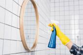 Fotografie Ausgeschnittene Ansicht einer jungen Frau in Gummihandschuhen, die Waschmittel auf Spiegel im Badezimmer sprüht
