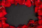 top view of rose petals isolated on black