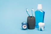 Malé hodiny v blízkosti zubních kartáčků, ústní voda a zubní model na modrém pozadí