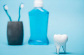 Close up view of tooth model near mouthwash and toothbrushes blurred on blue background