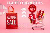 červené značky s prodejem v nákupním vozíku v blízkosti papírové tašky s podzimním prodejem nápisy na růžové