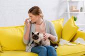 Nő -val allergia tüsszentés közben gazdaság szalvéta és sziámi macska