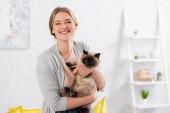 Glückliche Frau schaut in die Kamera, während sie siamesische Katze hält