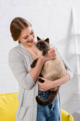 Young smiling woman petting siamese cat at home