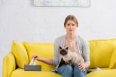 Szomorú nő -val allergia néz kamera mellett doboz -val szalvéta és sziámi macska