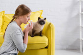 Side view of woman with napkin looking at siamese cat during allergy at home