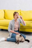 Mladá žena s ubrouskem trpící alergií v blízkosti chlupaté siamské kočky na koberci v obývacím pokoji