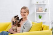 Šťastná žena drží chlupatý siamský kočka a dívá se na kameru na žlutém gauči