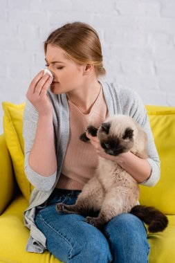 Young woman with allergy holding napkin near nose and siamese cat on sofa stock vector
