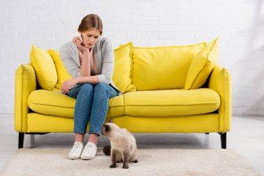 Alerjisi olan üzgün kadın oturma odasında kedisinin yanında peçete tutuyor.