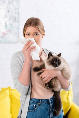 Woman holding napkin during allergy reaction on siamese cat stock vector