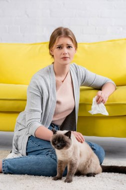 Upset woman with allergy holding napkin and looking at camera on carpet near siamese cat stock vector