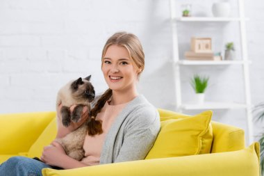 Happy woman holding furry siamese cat and looking at camera on yellow couch stock vector