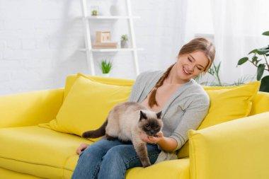 Oturma odasında siyam kedisine bakan pozitif kadın.