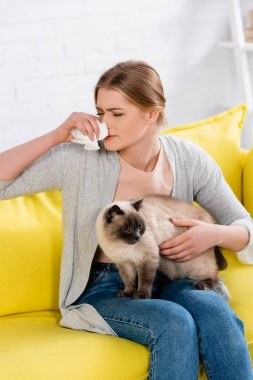 Young woman with napkin suffering from allergy while holding siamese cat stock vector
