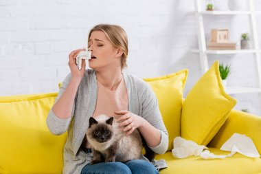 Woman with allergy sneezing near napkins and siamese cat at home stock vector