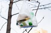 plastové láhve a cín v celofánovém sáčku na stromě, koncept ekologie