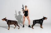 plná délka pohled na ženu v černém bodysuit stojící s puškou v blízkosti dobermans na šedém pozadí se stíny