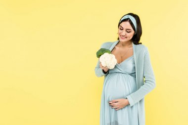 Pleased pregnant woman touching belly while holding broccoli and cauliflower isolated on yellow stock vector