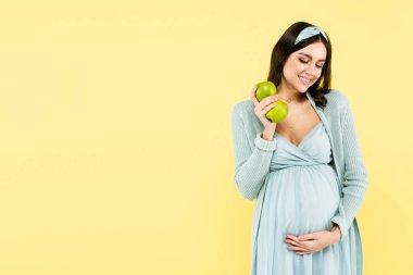 neşeli hamile kadın taze elmalar tutarken karnına dokunuyor sarıda izole edilmiş.